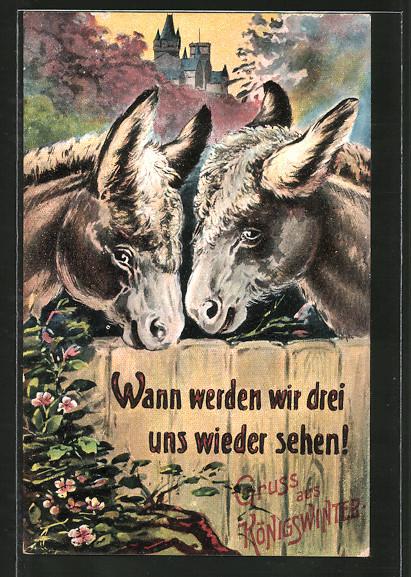 AK-Koenigswinter-Wann-werden-wir-drei-uns-wieder-sehen-Esel